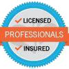 professional insured